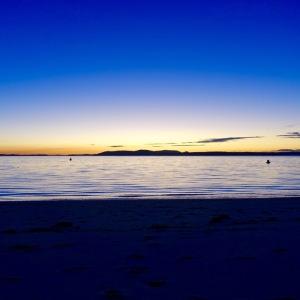 Port Sephens est la capitale des dauphins et des baleines.